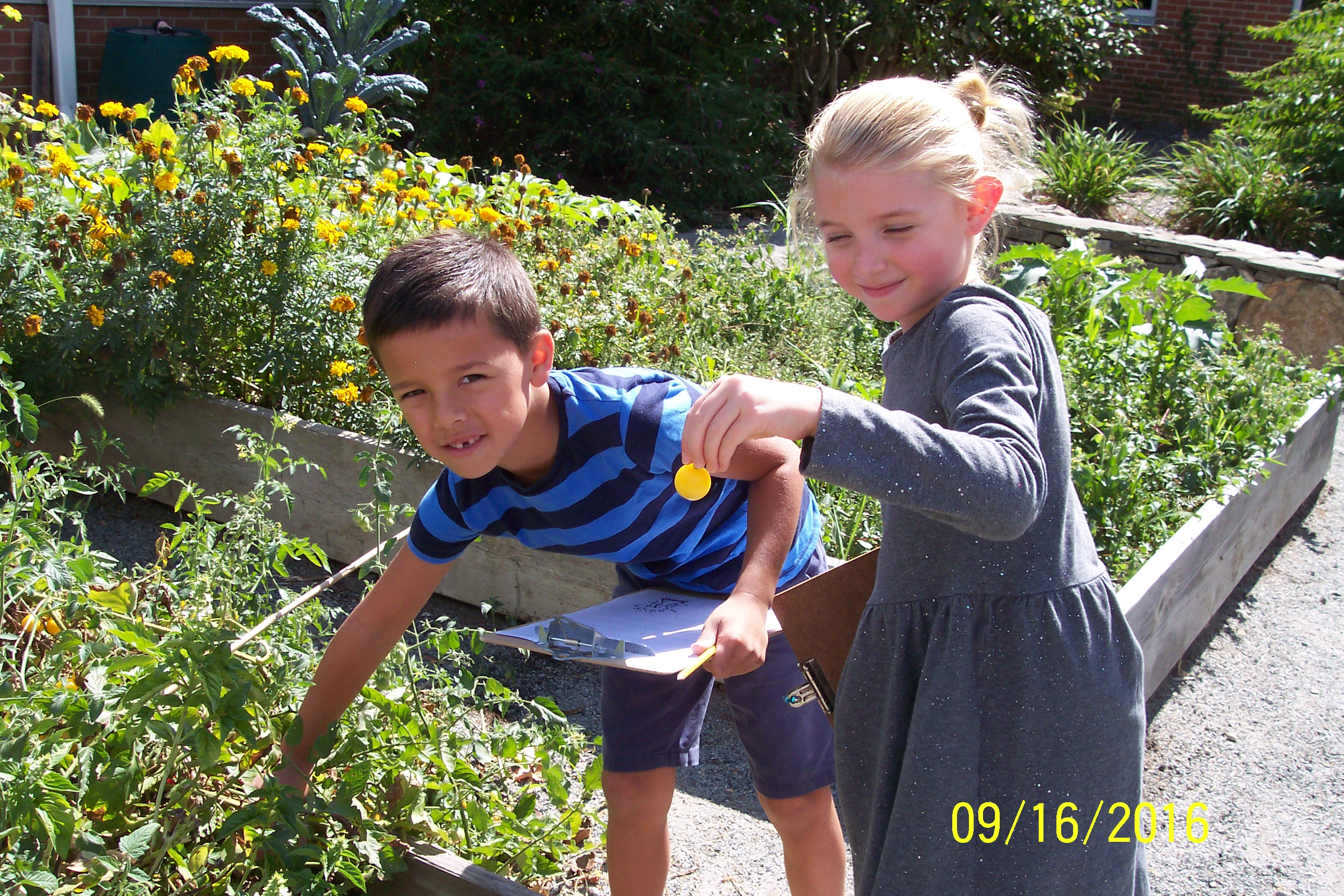 Students picking flowers from the Outdoor Learning Center